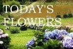 logoflowers1