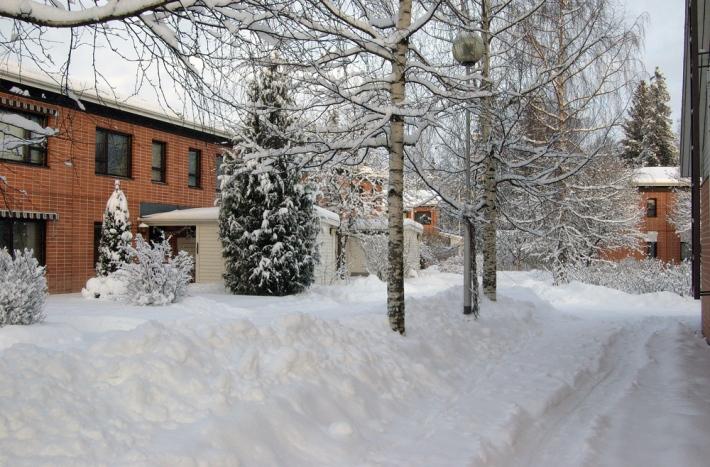 lunta pihalla