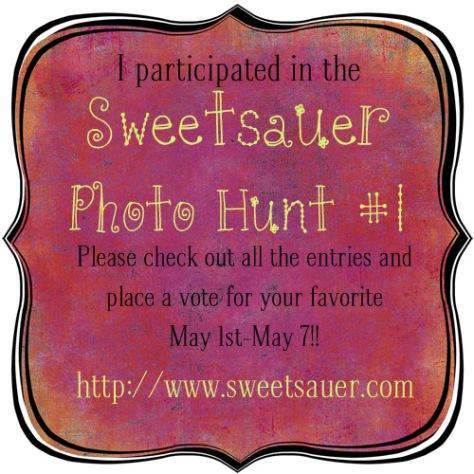 sweetsauer-photohunt