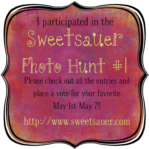 sweetsauer-photohunt