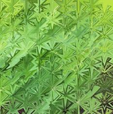 vihreä-5